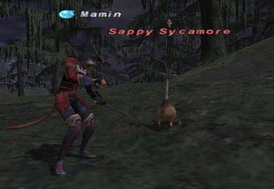 Sappy Sycamore.jpg